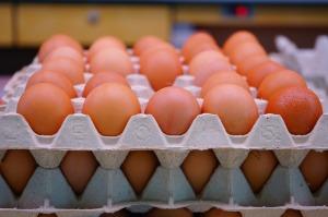 egg-318227_1280